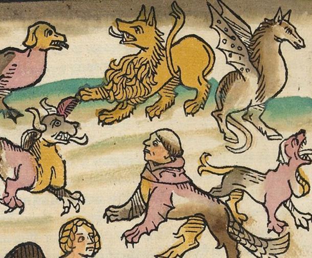 El libro de la naturaleza Alemania (1349–1350) Konrad von Megenberg. (Biblioteca Digital Mundial)