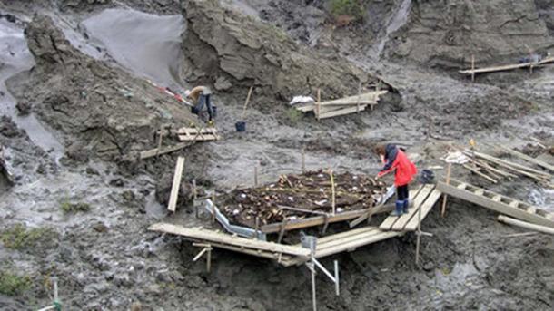 El sitio arqueológico donde se encontraron dos dientes de leche de 31,000 años. (Imagen: Elena Pavlova)