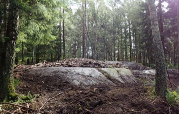 El sitio donde se encontró el pene de piedra debajo de la configuración de piedra. (Los arqueólogos / NHM)