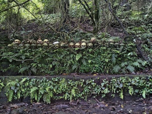 En el cementerio de la isla calavera hay un árbol Taru Menyan que emite un olor fragante, por lo que el cementerio no apesta. (Ayrahsha / CC BY-SA 4.0)