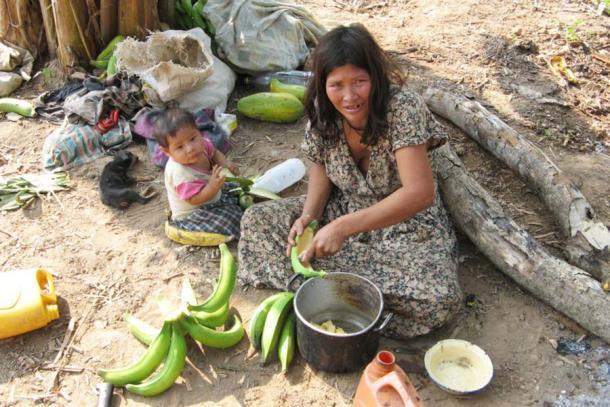 Una encuesta sistemática de los hábitos dietéticos de Tsimane encontró que los alimentos procesados representaban solo una pequeña porción de su dieta. (Proyecto de Historia de Vida y Salud de Tsimane)