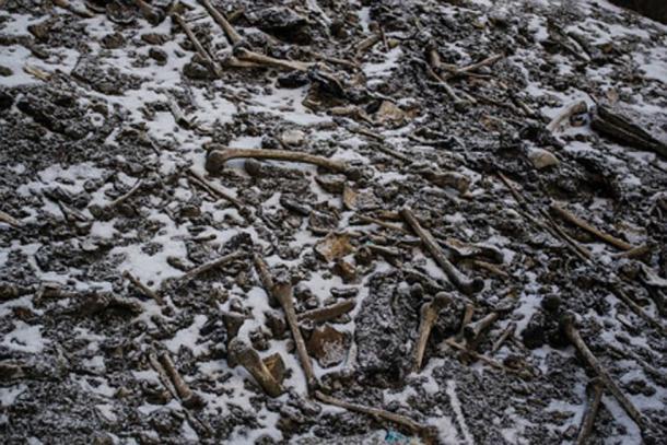 Esqueletos en el lago de la muerte. (Naturaleza / Uso justo)