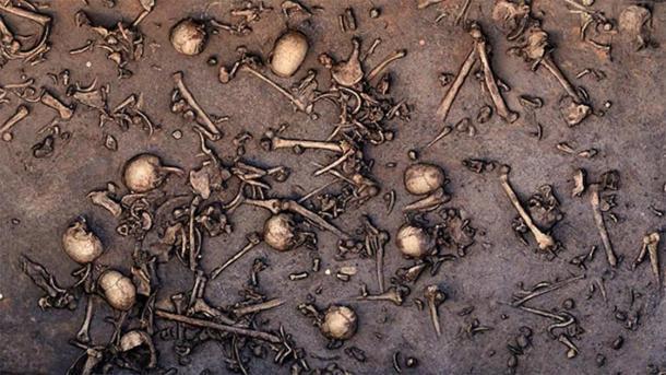 La excavación de un antiguo campo de batalla de la Edad del Bronce en el norte de Alemania reveló signos de una inmensa batalla, como huesos muy apretados, como se ve en esta foto de 2013 del sitio. Se dice que un área de 12 metros cuadrados contenía 1478 huesos, incluidos 20 cráneos. (Landesamt für Kultur und Denkmalpflege Mecklemburgo-Pomerania Occidental / Landesarchäologie / C. Harte-Reiter)