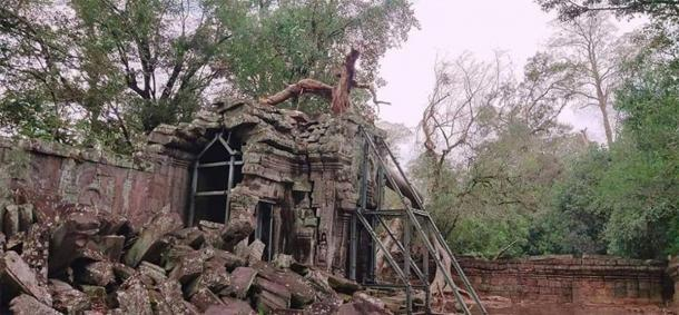Los expertos de Angkor Wat están retirando los árboles colapsados. (Knongspor)