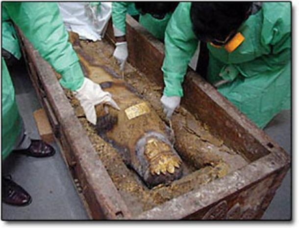 Expertos examinan el ataúd y el cuerpo momificado (Fuente: Sciencemag)