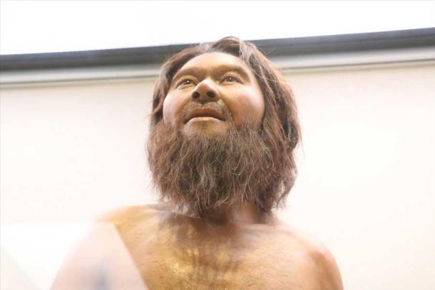 Reconstrucción en exhibición de un hombre de Minatogawa en Japón (Tsunagaru Map)