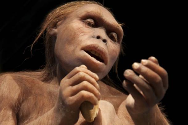 El nuevo estudio muestra que la reducción de la fertilidad neandertal puede estar relacionada con la falta de alimentos. (procy_ab / Adobe Stock)
