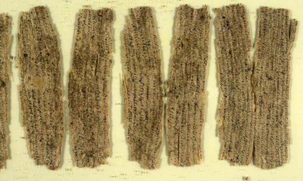Fragmentos de escritos de corteza de abedul de la antigua Gandhara. Crédito: British Library (dominio público)
