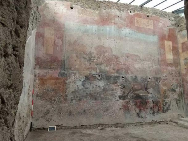 El fresco descolorido antes de ser restaurado. (Sitios de Pompeya)