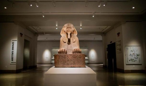 La nueva Galería Sphinx en un lugar privilegiado cerca de la entrada principal del Museo Penn. (Eric Sucar, Universidad de Pennsylvania)