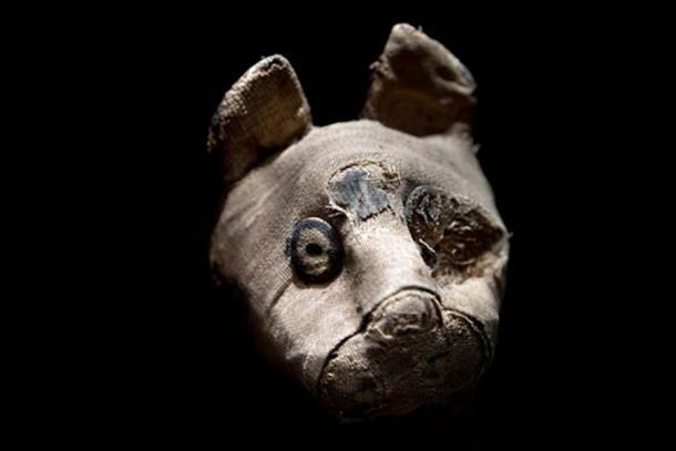 Gato momificado encontrado en la tumba egipcia (Andrea Izzotti / Adobe Stock)