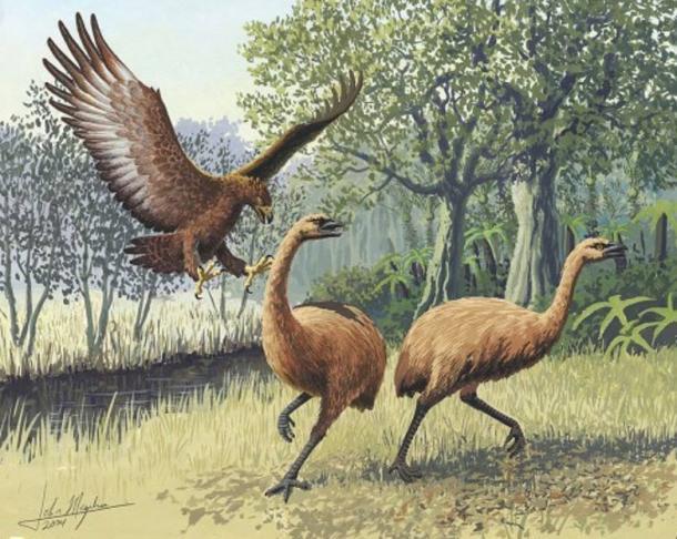 Águila gigante de Haasts atacando moa de Nueva Zelanda (Wikimedia Common)