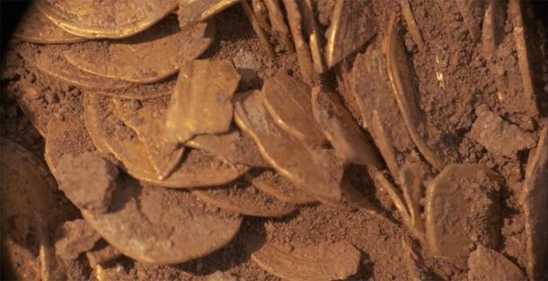 Parte del importante tesoro de monedas de oro todavía está en el suelo. (Autoridad de Antigüedades de Israel)