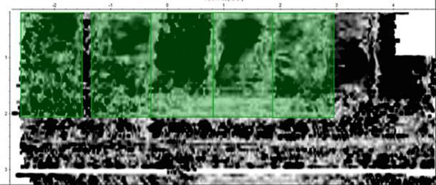 Datos GPR de las tumbas (en verde) de la familia Shakespeare. El patrón de las características lineales con áreas de negro entre ellas representa vacíos naturales presentes alrededor de los entierros simples. La tumba de William es la segunda desde la izquierda. Centro de Arqueología de la Universidad de Staffordshire, Autor proporcionado (Sin reutilización)