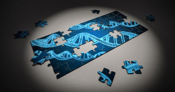 """""""Tal vez podríamos descubrir un grupo de genes que necesitamos activar o desactivar [...]"""" (CC0)"""