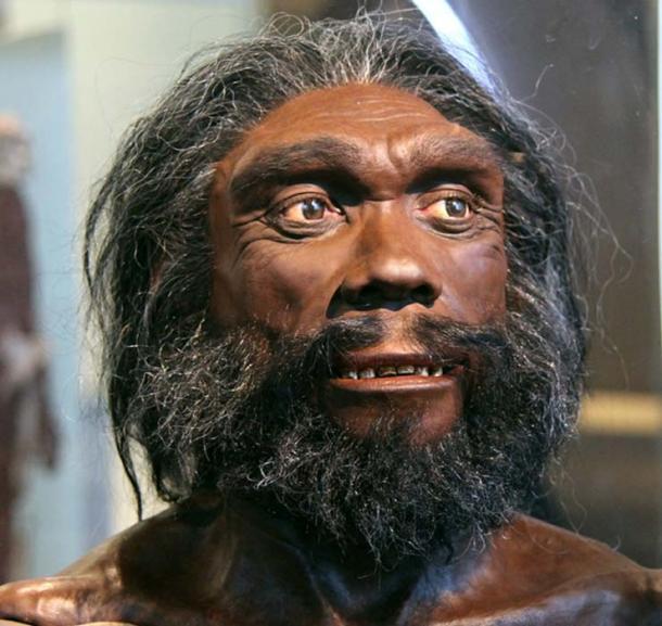 Hombre de Heidelberg: reconstrucción facial basada en el cráneo de Kabwe que se muestra en el Museo Smithsonian de Historia Natural. (Tim1965 / CC BY-SA 2.0)