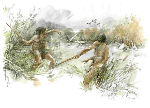 Los cazadores de la edad de hielo pueden haber usado el palo de lanzar / palo de matar para cazar aves acuáticas. (Eberhard Karls Universität Tübingen)