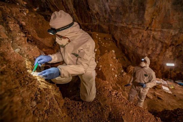 El profesor asistente Mikkel Winther Pedersen, de la Universidad de Copenhague, toma muestras de ADN en la cueva Chiquihuite, un sitio clave en la investigación de la población de las Américas. (Imagen: Devlin A. Gandy / Nature)
