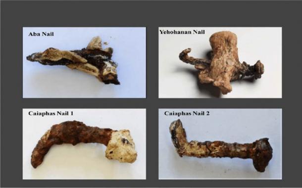 Clavos usados en crucifixiones. El clavo 1 está doblado 65 grados El clavo 2 aproximadamente 75 grados en el extremo cónico roto. Se unen astillas de hueso (de color claro) al clavo Aba y al clavo Yehohanan Heel Bone. El caparazón blanco de las uñas de Caifás es piedra de flujo de calcita (CaCO 3). Todas las uñas contienen restos de tejido óseo adheridos o perforados. (Aryeh Shimron / CC BY 4.0)