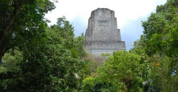 Un templo se eleva sobre la selva tropical en la antigua ciudad maya de Tikal. (David Lentz)