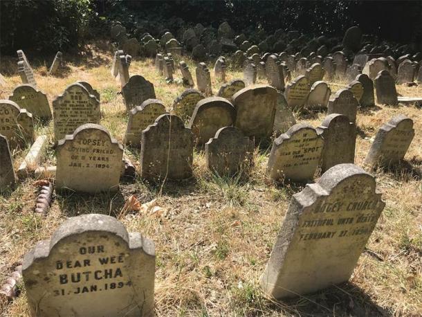 Sobreviviendo a las lápidas del cementerio de mascotas de Hyde Park. (fotografía de E. Tourigny, tomada con permiso de The Royal Parks / Antiquity)