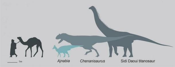 Silueta que muestra el tamaño de Ajnabia odysseus en comparación con los humanos y la fauna de dinosaurios maastrichtiana contemporánea de Marruecos. (Dr. Nick Longrich / Science Direct)