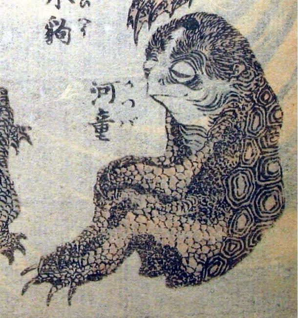 Un dibujo de bestiario japonés que representa a un demonio Kappa (c. 1760-1849). Dominio público