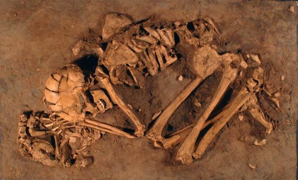 En el norte de Israel, los arqueólogos descubrieron los restos de una mujer natufiense de 12.000 años con la mano apoyada en un cachorro, en el sitio 'Ain Mallaha. Este es uno de los primeros restos conocidos relacionados con la domesticación de perros. (Museo de Israel, Jerusalén)