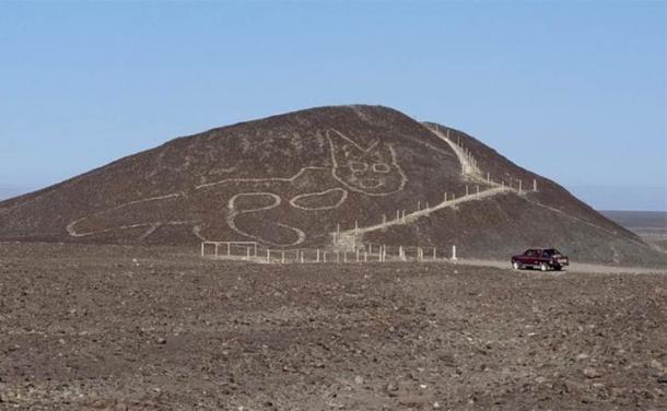 Con base en el diseño del geoglifo del gato, los expertos creen que fue elaborado por la cultura Palpa. ( Prensa Libre )