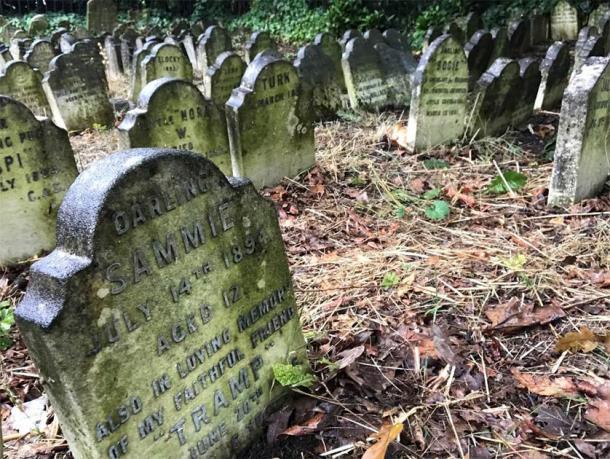 Lápidas en uno de los cementerios de mascotas. (E. Tourigny / Antigüedad)