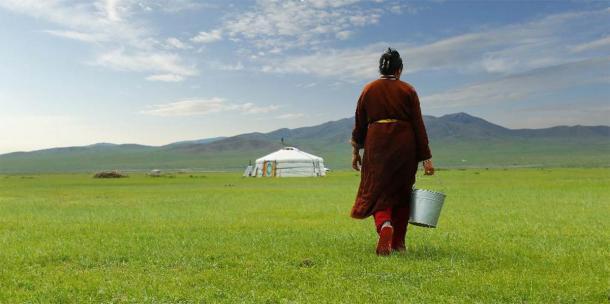 Agricultor llevando un balde de leche después de ordeñar una vaca en las praderas de Mongolia. (MICHEL / Adobe Stock)