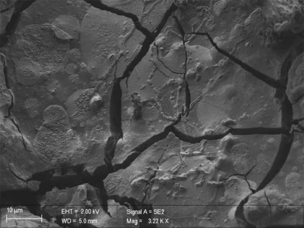 Una neurona, junto con sus axones, es visible en este segmento vitrificado de tejido cerebral de una víctima que estaba cubierta por cenizas cuando el Vesubio entró en erupción en el 79 d.C. (Pier Paolo Petrone, Universidad Federico II de Nápoles, Italia)