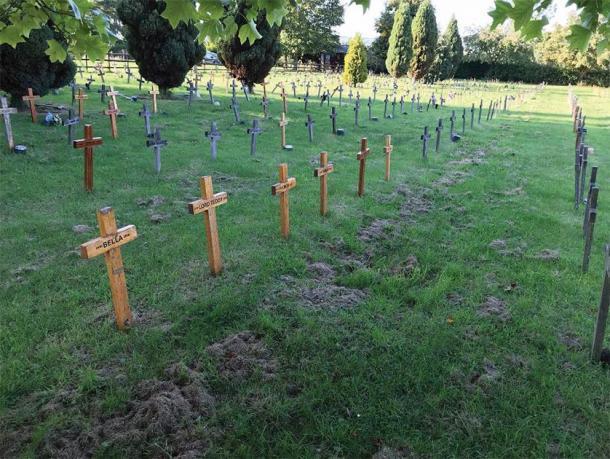 Marcadores de tumbas de cruz de madera característicos del cementerio de mascotas de Buena Vista, Leicestershire. (K. Bridger / Antigüedad)