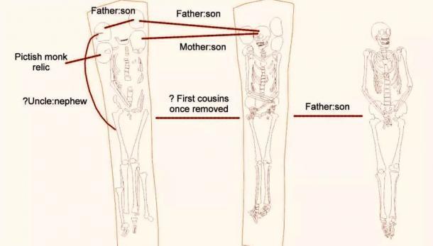 Al realizar un estudio de análisis de ADN de los restos humanos, el equipo ha deducido que la mayoría de los restos pertenecen a miembros de la misma familia. (Herencia FAS)