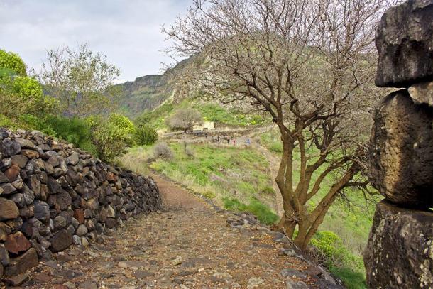 Un antiguo camino a las ruinas en Gamla, Israel, donde se robaron artefactos que luego se reportaron como malditos y devueltos. (Robert / Adobe Stock)