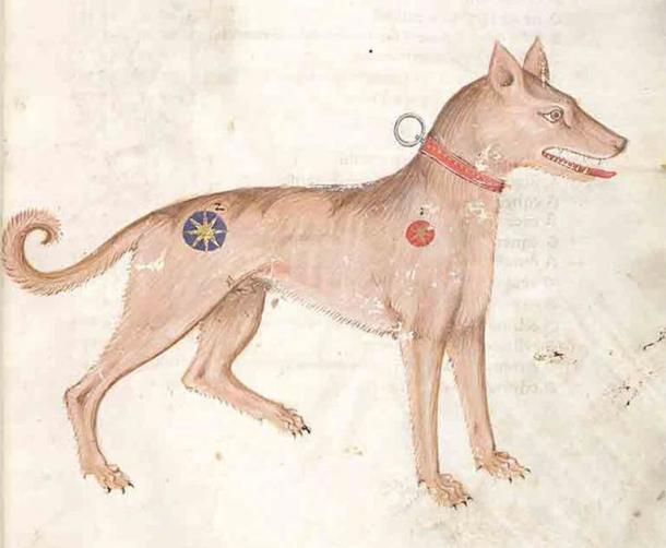 Saurr se volvió amable en el Trondheim del siglo XI. (Dominio público)