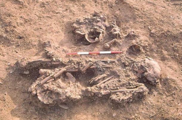 Esqueleto de Windmill Fields, enterrado con cráneos y huesos largos de tres personas que habían muerto desde varias décadas hasta más de un siglo antes. (Crédito: Tees Archaeology / Antiquity Publications Ltd)
