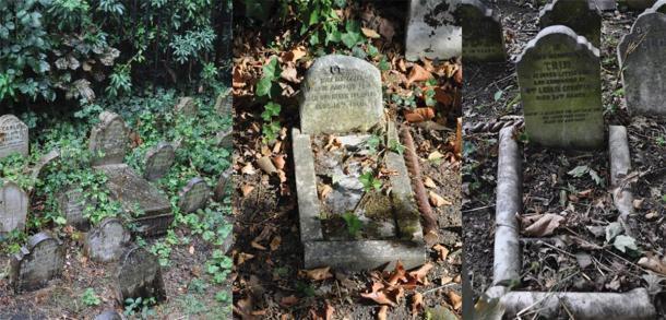 Ejemplo del uso de piedras corporales, bordillos y lápidas para parecerse a la apariencia de una cama en el cementerio de mascotas de Hyde Park. (Fotografía de E. Tourigny, tomada con permiso de The Royal Parks / Antiquity)