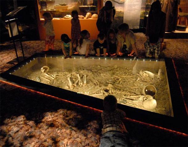 El descubrimiento de Bergsgraven de 1953 durante la construcción de una carretera en Linköping, Suecia, incluyó la tumba de lo que probablemente era una familia completa, incluidos hombres, mujeres, niños y perros, y elementos como hachas de batalla. Actualmente se encuentra en exhibición en el Museo de Östergötlands. (Museo de Östergötlands)