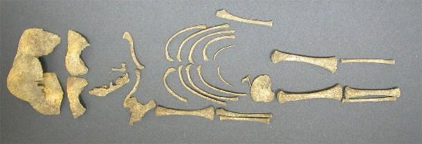 Uno de los 87 esqueletos de bebés que probablemente murieron al nacer se encontró en Yewden Villa en Hambleden, que se supone que es el sitio de un antiguo burdel. (Herencia inglesa)