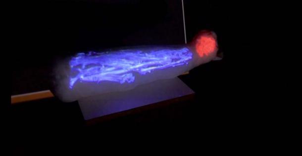 Imagen de realidad aumentada de lo que hay dentro de la momia del gato. (Museo de Bellas Artes de Rennes)