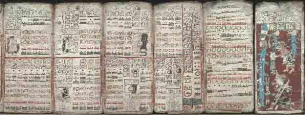 Seis hojas del Códice de Dresde (págs. 55-59, 74) que representan eclipses, tablas de multiplicar y el diluvio. (Dominio público)