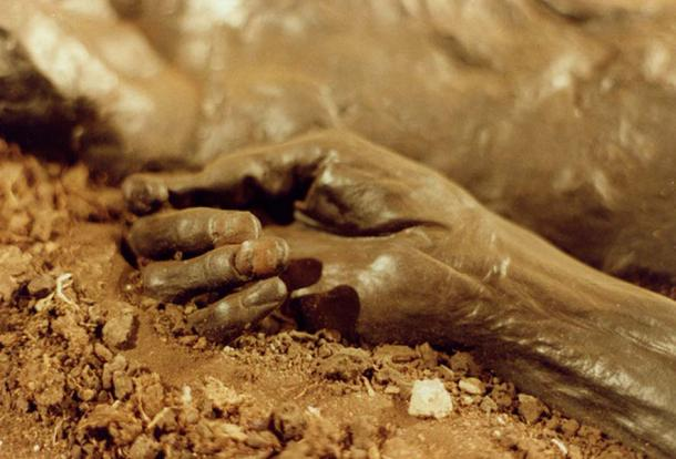 La mano bien conservada del hombre de Grauballe. (Sven Rosborn / Dominio Público)