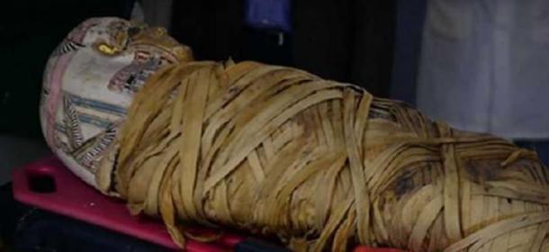 La momia tiene alrededor de 2.000 años y es de Egipto. (Captura de pantalla de Youtube)