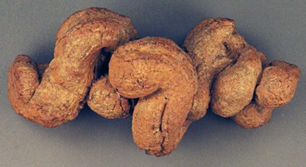 La muestra de coprolito fosilizada se descubrió en el Lower Pecos Canyonlands del suroeste de Texas. (Natuur12 / CC BY-SA 2.0 )