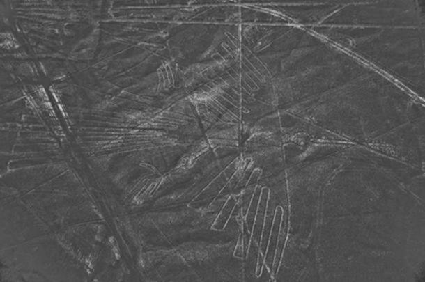 Las imágenes son frágiles ya que están hechas moviendo las rocas negras para revelar la arena blanca que se encuentra debajo. El movimiento adicional de las rocas es perjudicial para las imágenes. (CC BY 2.0 )