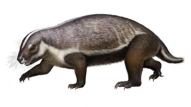 """Reconstrucción realista de Adalatherium hui (""""bestia loca""""), un nuevo mamífero gondwanatheriano del Cretácico Tardío de Madagascar. (Andrey Atuchin / Museo de Naturaleza y Ciencia de Denver)"""