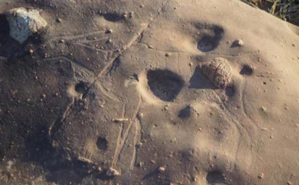 Mire de cerca y la tenue talla de un antílope emerge de la roca aquí. (Dr. Matthew Huber / Universidad del Estado Libre)