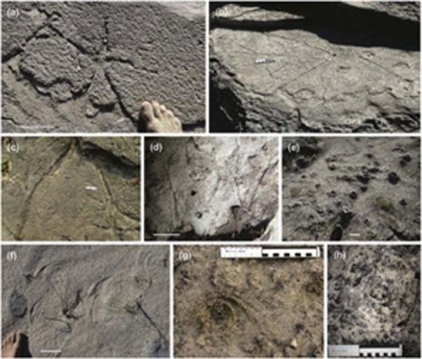 Los patrones antiguos se están estudiando a partir de muestras y fotos tomadas. (Science Direct)