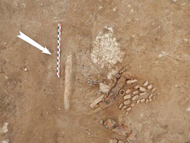 La tumba contenía una máscara funeraria de oro, tenedores de plata y anillos de oro. (Ministerio de Cultura griego)